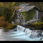 Pintura De Outono