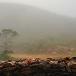 Fog Mineiro