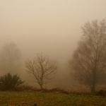 A Caminho De Melgaço Com Nevoeiro