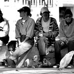 4 Amigos E Um Cão