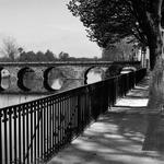 A Ponte Vista Do Jardim