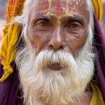 O Homem Das Barbas 2 (Cor)