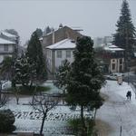 A Neve