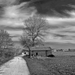 Campos Do Mondego
