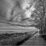 Caminho Livre Em 2010 Com A Natureza.