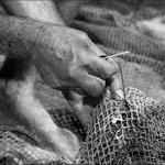 Nós dos dedos...Nós das redes....