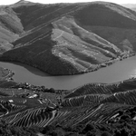 Grafgismos do Douro