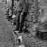 O Sr. e o Cão