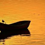 Rio de Ouro_