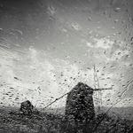 Gavinhos Storm