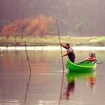 Pescador da Ria