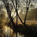 Encantos do rio Febros