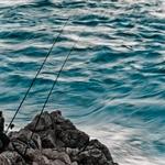 ..pescando..