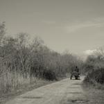 Vai pelo caminho_________