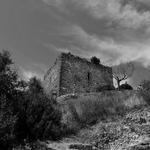Abandono Patrimonial