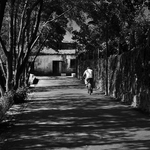 passeios junto ao rio