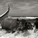 desafiando o mar