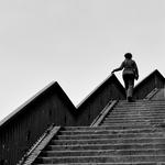 Escadaria da vida___