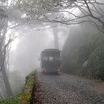Por caminhos de névoa
