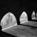 Sombras monásticas