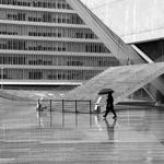 Reflexos de um dia de chuva___