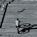 O ciclista e a pomba___