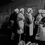As cozinheiras