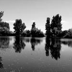 Espelho na Alverca ____