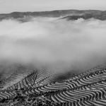 Nebelinas no Douro