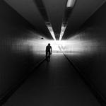 Caminho para a luz