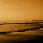Mar dourado ___