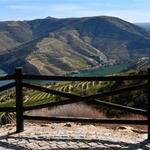 Com Vista para O Douro