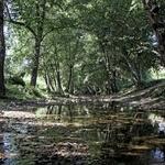 Falta de agua na Ribeira