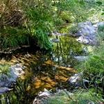 Falta agua na Ribeira