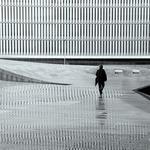 Verticalidades num dia de chuva