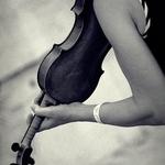 Violino divino II