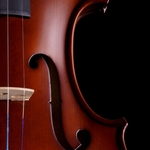 Violino.