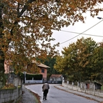 No Outono da Vida