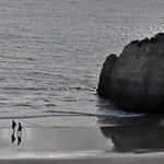 Sós, na vastidão do mar