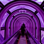 Purple Escalator