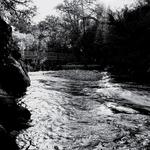Uma clareira no riacho ...