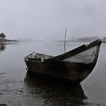 Neblinas na Ria