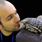 O beijo do lagarto.