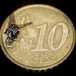 A mosca do Euro banqueteia-se em Portugal!