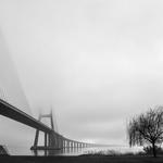 Neblina matinal.