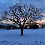 Pôr-do-Sol após uma nevada