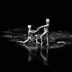 o bailado____
