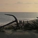 Na praia das âncoras