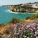 Primavera na costa Algarvia