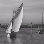 A regata